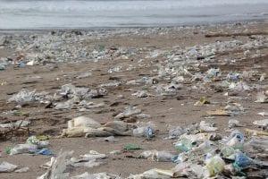 Umweltbewusstsein keine Wegwerfutensilien